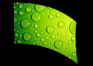 030202s - 36x54 Standard Green Water Beads