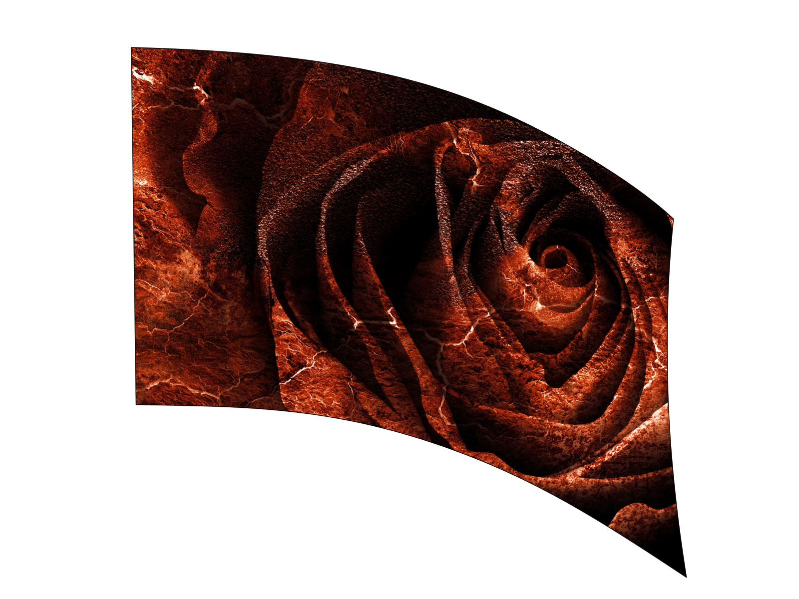 070207s - 36x52 Standard Blood Rose