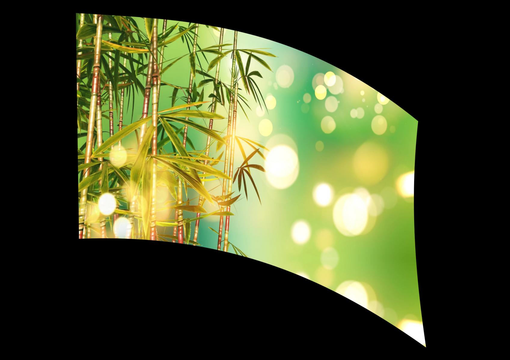 070306s - 36x54 Standard Bamboo