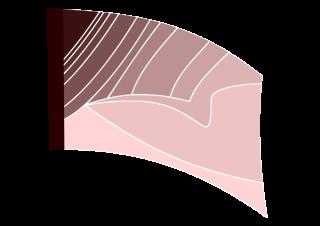 070404s - 36x54 Standard Mauve Color Block Cocoon